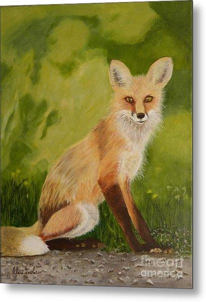 Red Fox 1 Metal Print