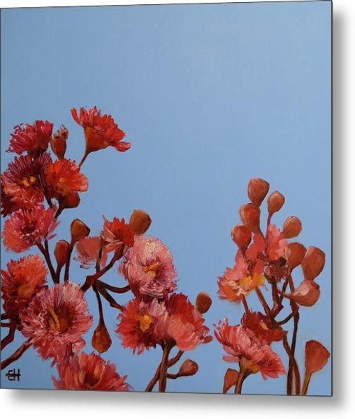 Red Gum Blossoms Australian Flowers Oil Painting Metal Print