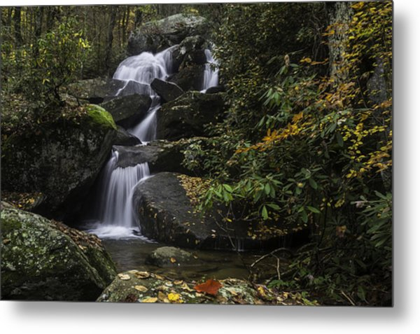 Red Leaf Waterfalls Metal Print