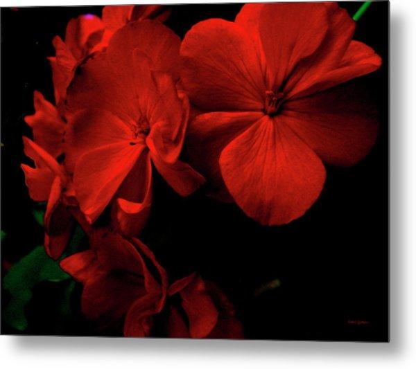 Red  Midnight Magic Flowers Metal Print