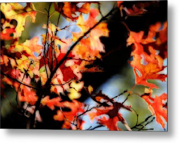Red Oak Leaves In Fall Metal Print by Linda Phelps