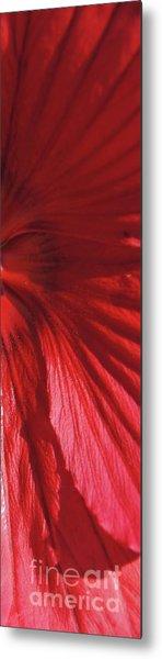 Red Petals Metal Print