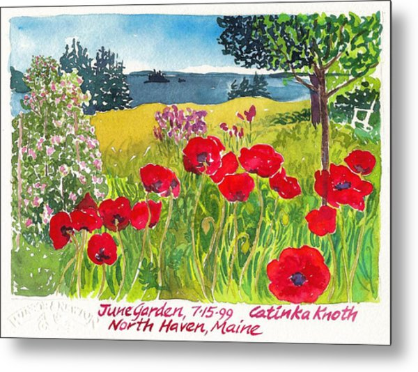 Red Poppies Coastal Maine Island June Garden North Haven  Metal Print by Catinka Knoth