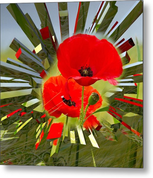 Red Poppies Go Digital Metal Print