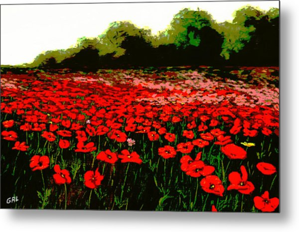 Red Poppies Landscapes Flowers Emerald Isle Multimedia Fine Art Metal Print by G Linsenmayer