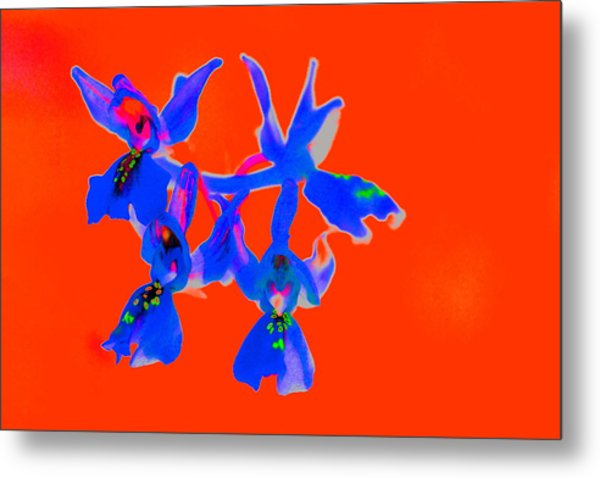 Red Provence Orchid Metal Print