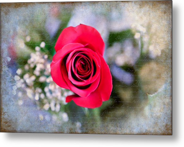 Red Rose Elegance Metal Print
