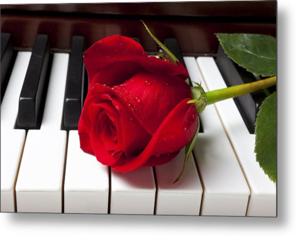Red Rose On Piano Keys Metal Print