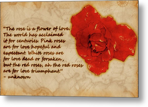 Red Rose Significance Metal Print