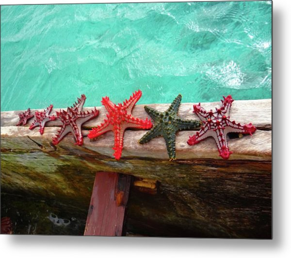 Red Starfish On A Wooden Dhow 5 Metal Print