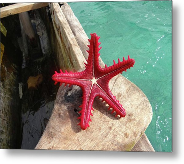 Red Starfish On A Wooden Dhow 6 Metal Print