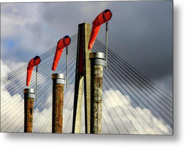 Red Subject Metal Print