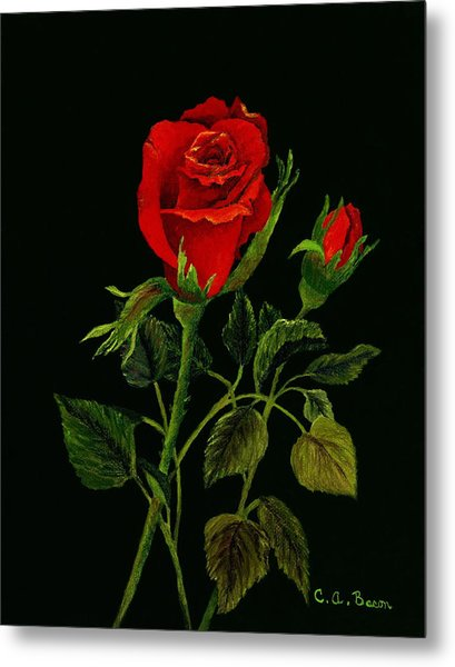 Red Tango Rose Bud Metal Print