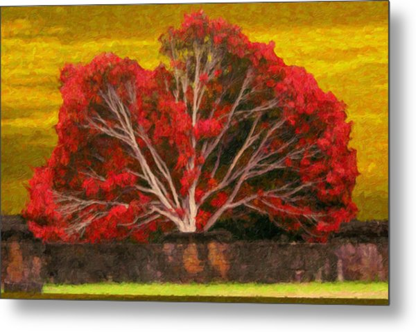 Red Thai Tree Metal Print
