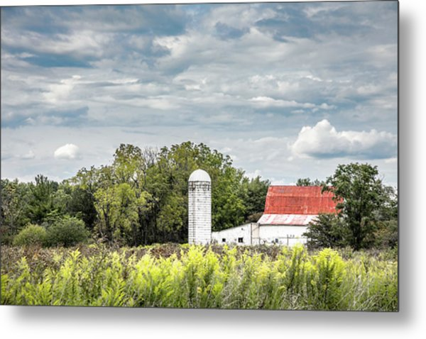Red Tin Roof Metal Print