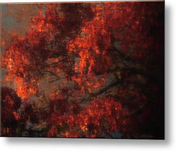 Red Tree Scene Metal Print