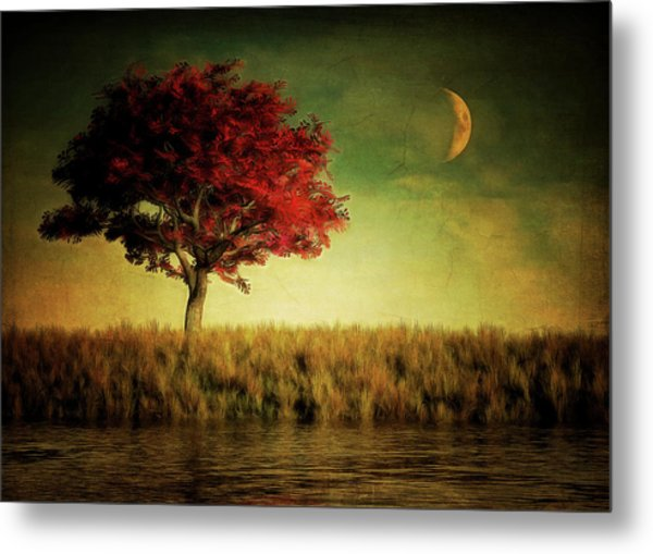 Red Tree With Moonrise Metal Print