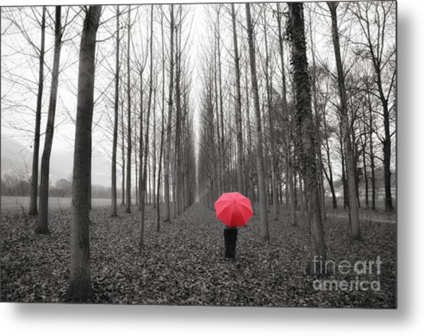 Red Umbrella In An Allee Metal Print