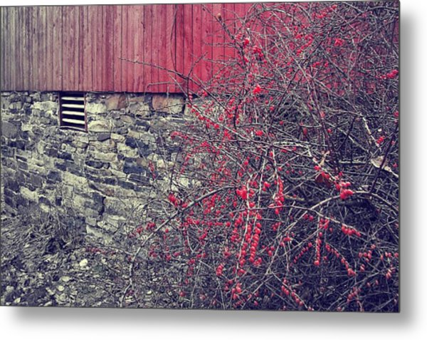 Red Winter Metal Print by JAMART Photography