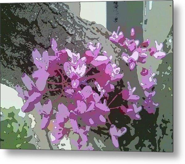 Redbud Tree Metal Print