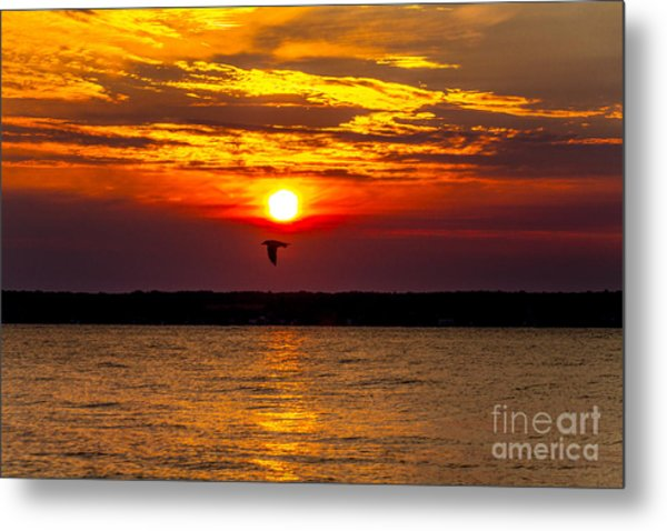 Redeye Flight Metal Print