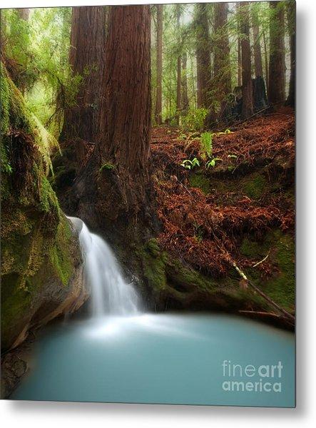 Redwood Forest Waterfall Metal Print