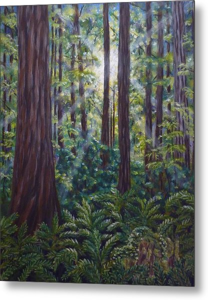 Metal Print featuring the painting Redwoods by Amelie Simmons