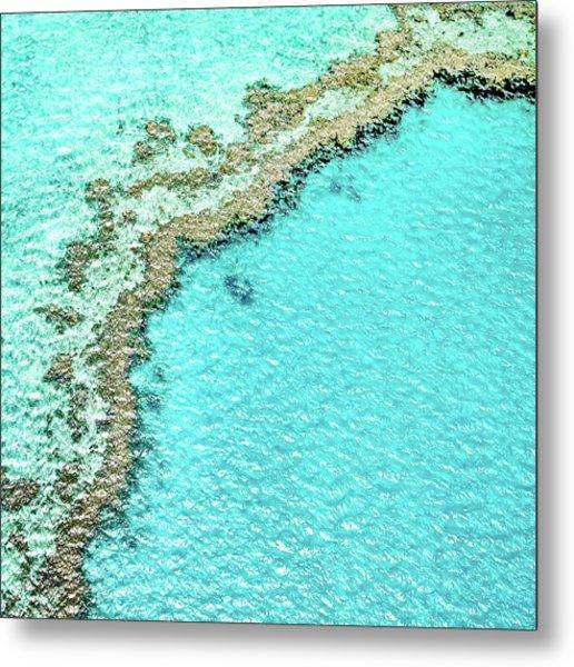 Reef Textures Metal Print