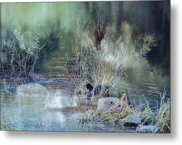Reflecting On A Misty Morning Metal Print