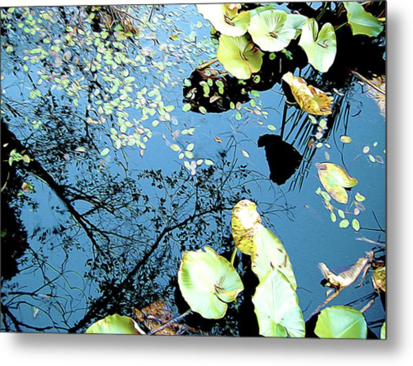 Reflecting Pond Metal Print