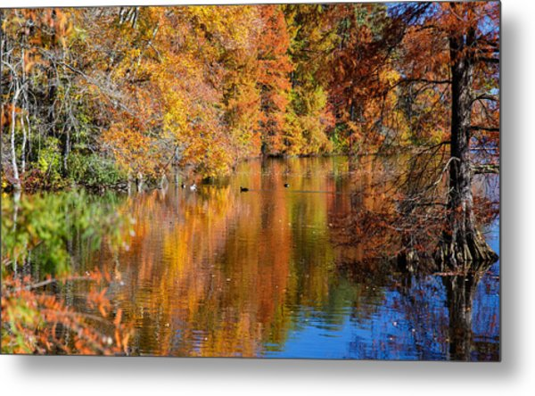 Reflected Fall Foliage Metal Print