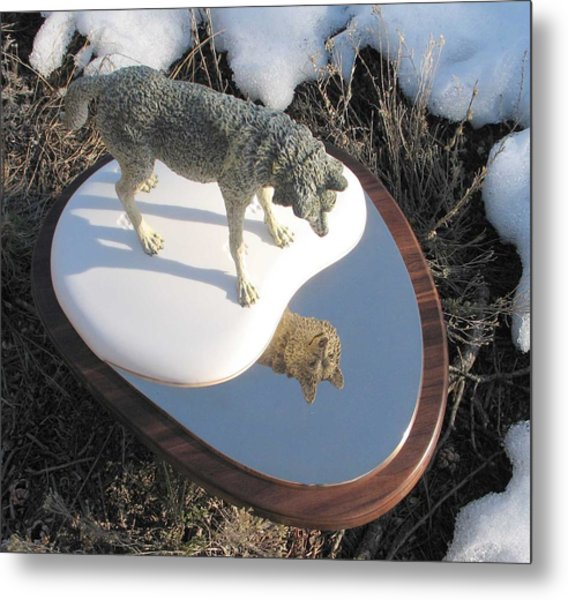 Reflection Metal Print by James Roybal