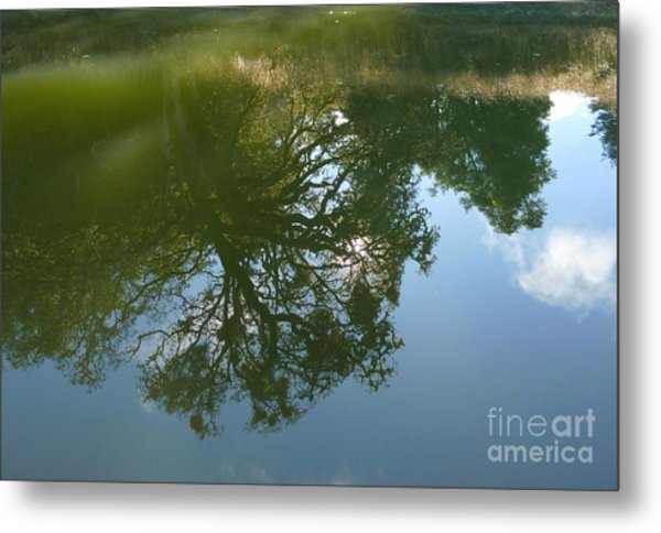 Reflection Metal Print by JoAnn SkyWatcher