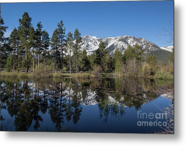 Reflection Of Mount Tallac Metal Print by Webb Canepa