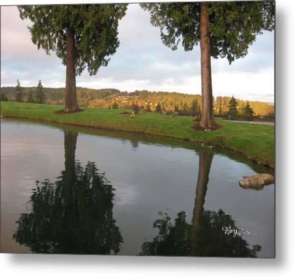 Reflections #183 Metal Print