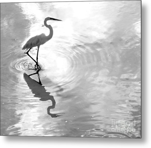 Reflections And Ripples Metal Print