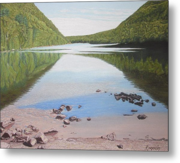 Reflections At Bubble Pond Metal Print