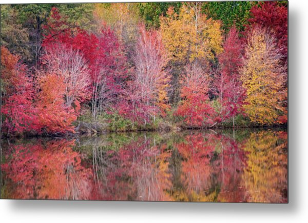 Metal Print featuring the photograph Reflections by David Waldrop