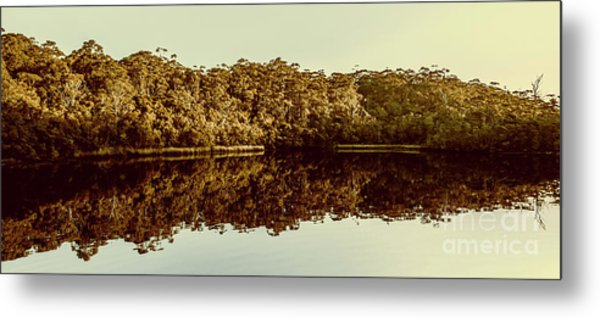 Reflections From Cockle Creek  Metal Print