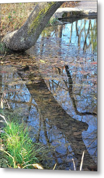 Reflections I Metal Print
