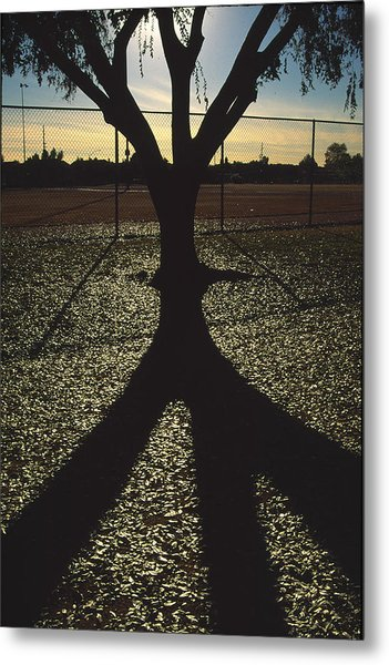 Reflections In A Park Metal Print