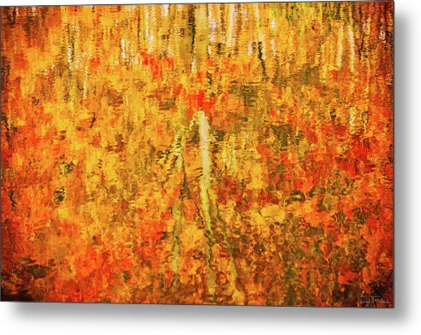 Metal Print featuring the photograph Reflections Of Fall by Rick Furmanek