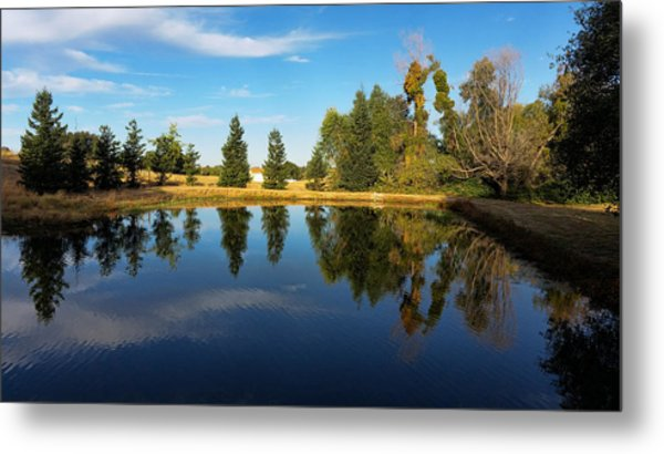Reflections Of Life Metal Print