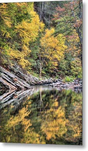 Reflections Of Natural Color Metal Print by JC Findley