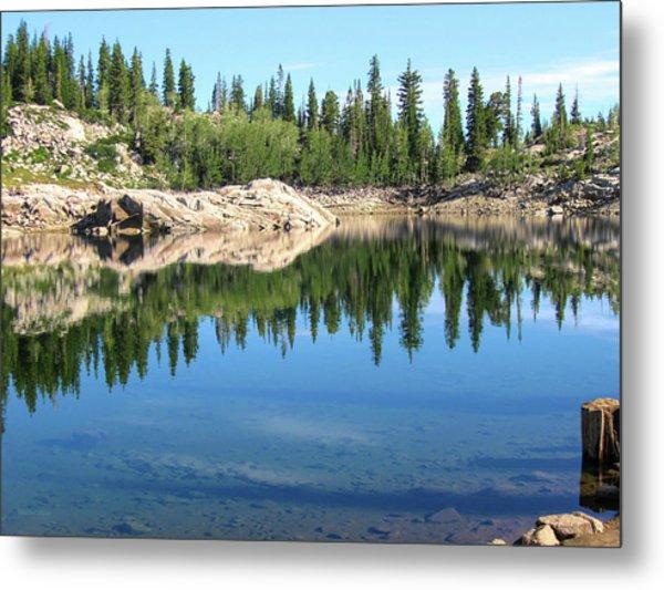 Reflections On Lake Mary Metal Print
