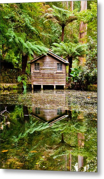 Reflections On The Pond Metal Print