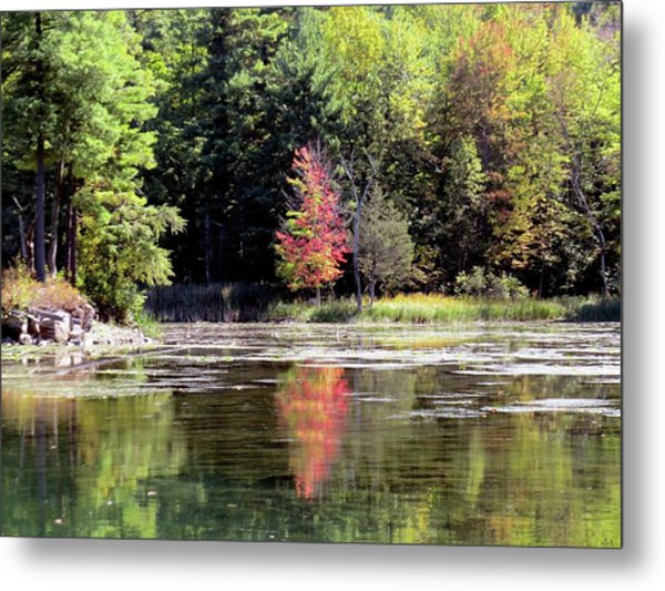 Reflections On The Rift Metal Print