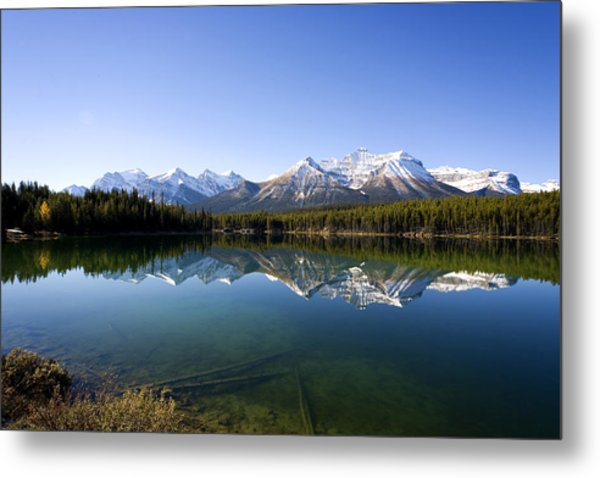 Reflections Metal Print by Richard Steinberger
