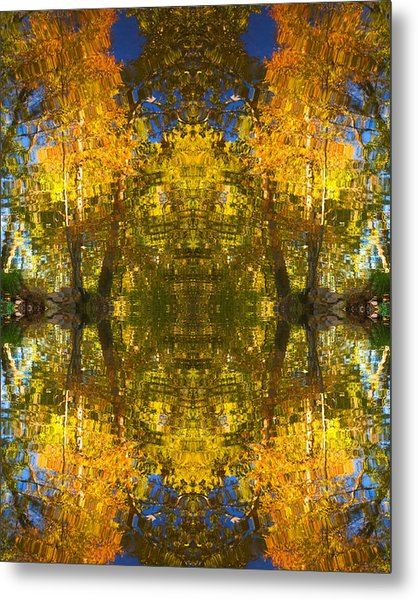Reflections Trees And Water Metal Print by Bob Coates
