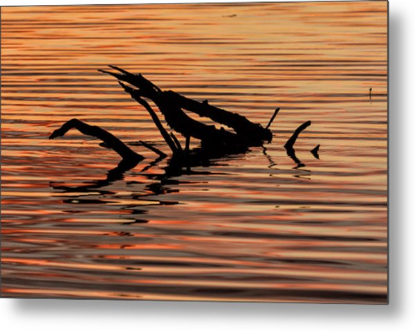 Reflective Abstract Metal Print